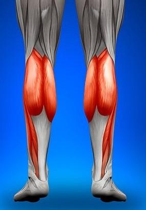 Лечение икроножной мышцы